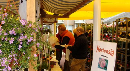 Plantenmarkt Vinkeveen